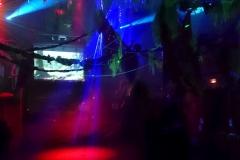 Jungle Party - Polisto 2015