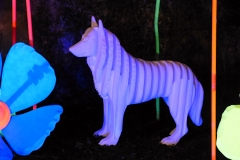 """""""Canis Lupus Fabulosus"""" - FEST'Hiver 2019 - Montmorillon (86)"""