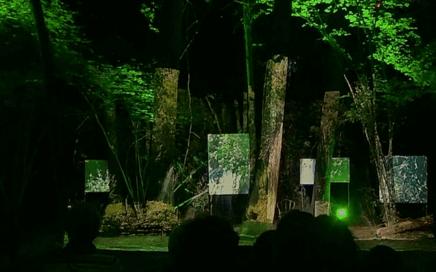 """Vidéoprojection pour le Dîner Spectacle """"Entrer en forêt"""" à Haims (86)"""